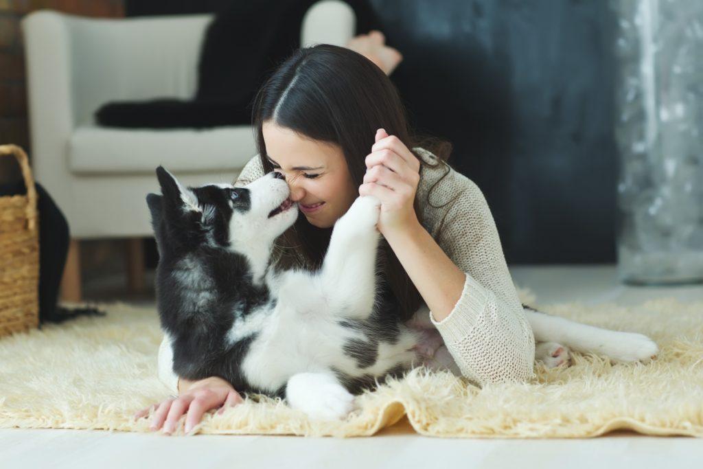 ljubav izmedju psa i vlasnika
