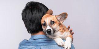 rasa psa i licnost vlasnika