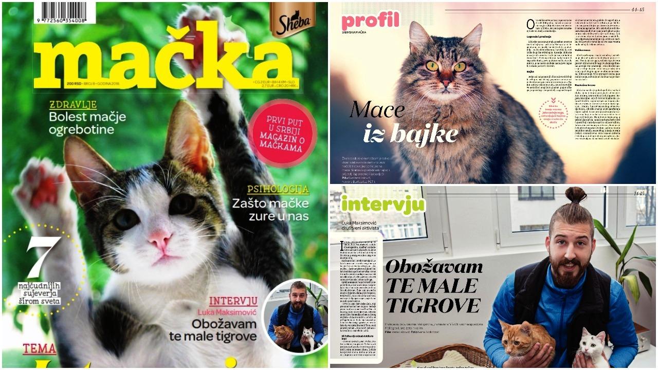 magazin macka