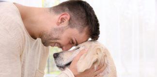 vaspitanje psa