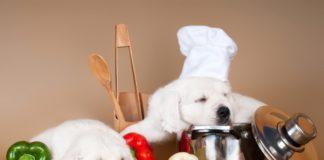 voce u povrce u ishrani psa
