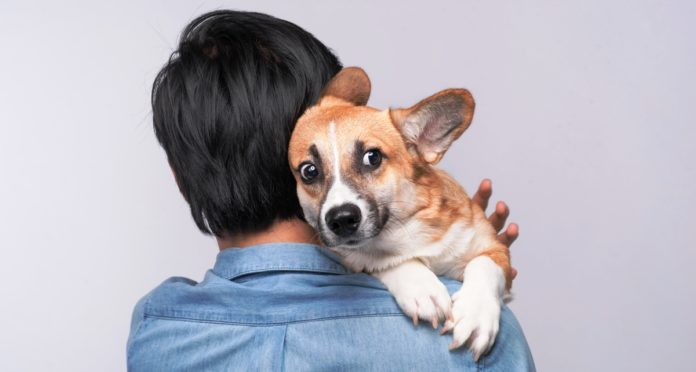 psi ne vole grljenje