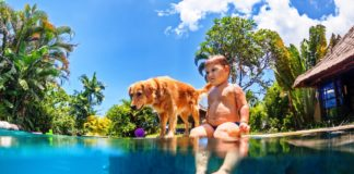 pas i plivanje