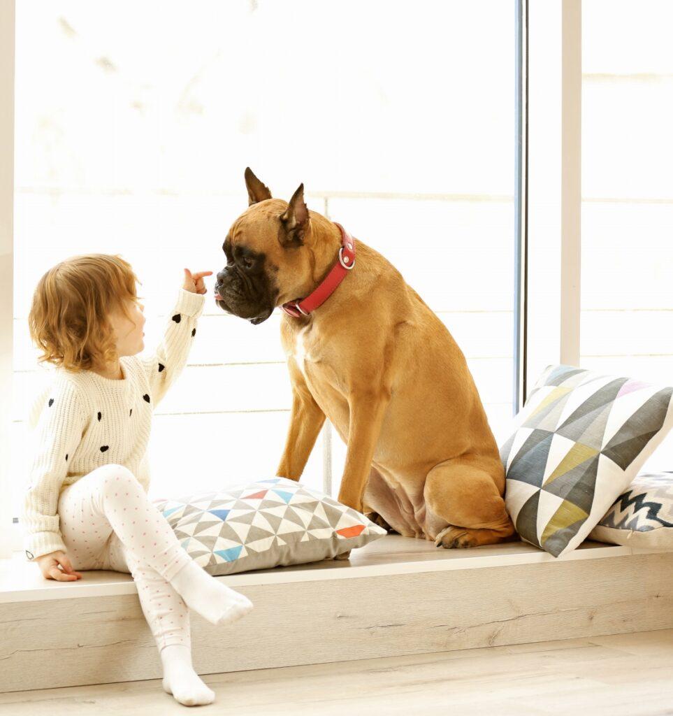 dete i pas, devojcica i pas