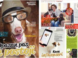 magazin pas