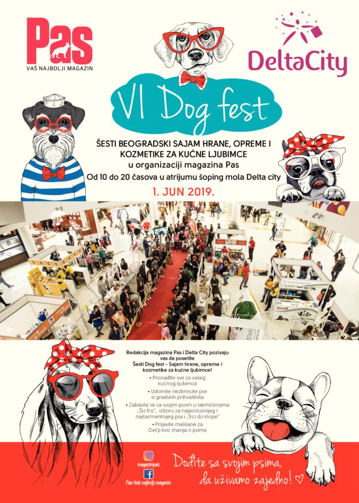 VI Dog fest