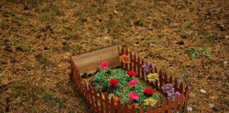 groblje za kucne ljubimce