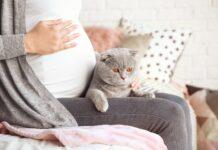 macka i trudnica
