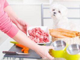 kuvanje hrane za psa
