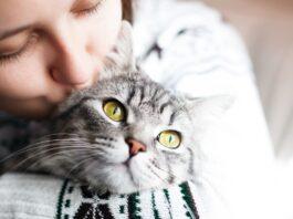 zena i macka