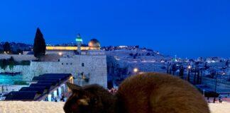 macke u jerusalimu