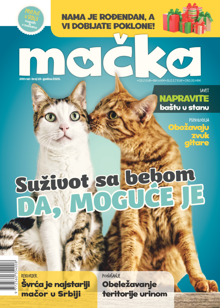 macka magazin