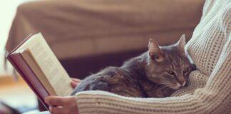 vlasnik i macka