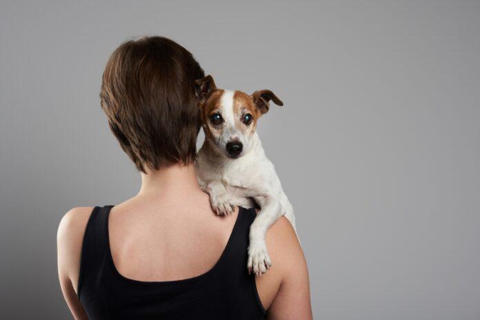 vlasnik i pas