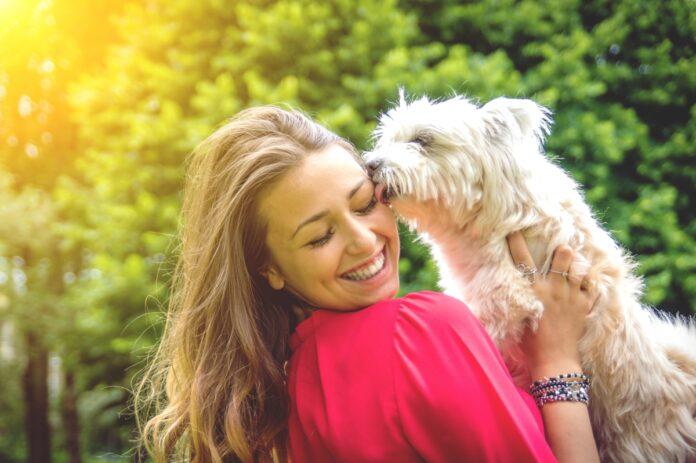 pas i vlasnica