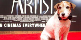 pas iz filma umetnik