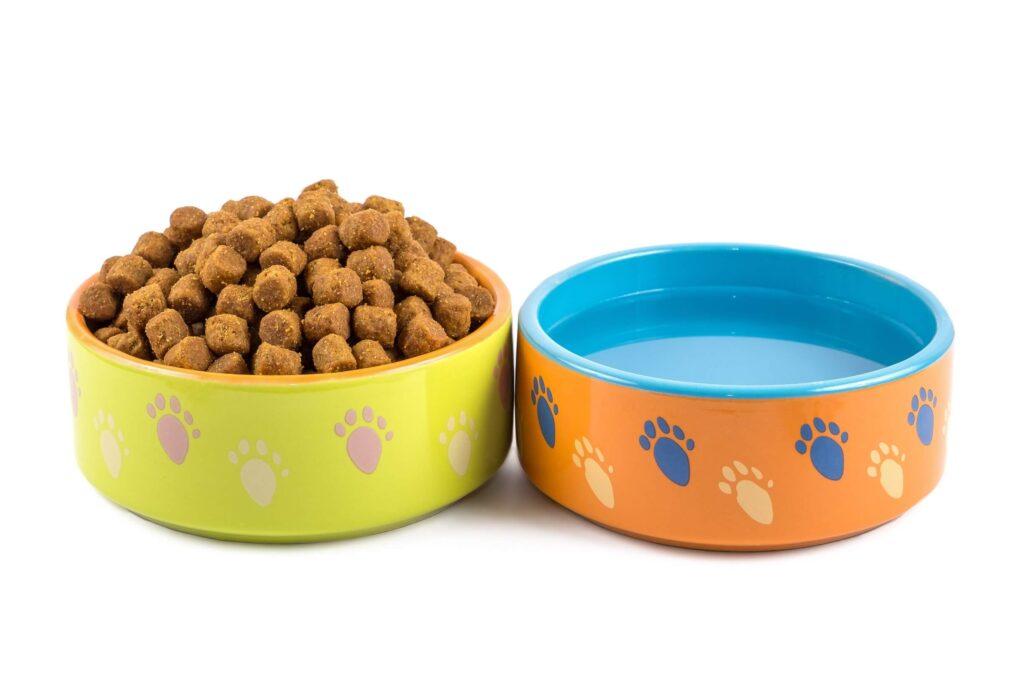 cinije za vodu i hranu za psa