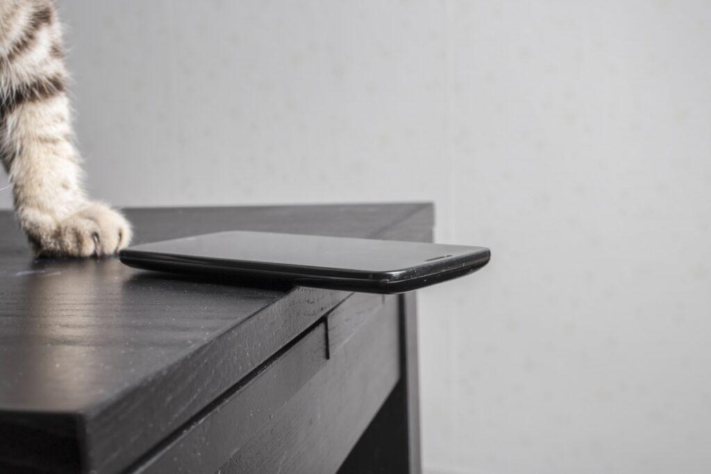 macka rusi stvari sa stola