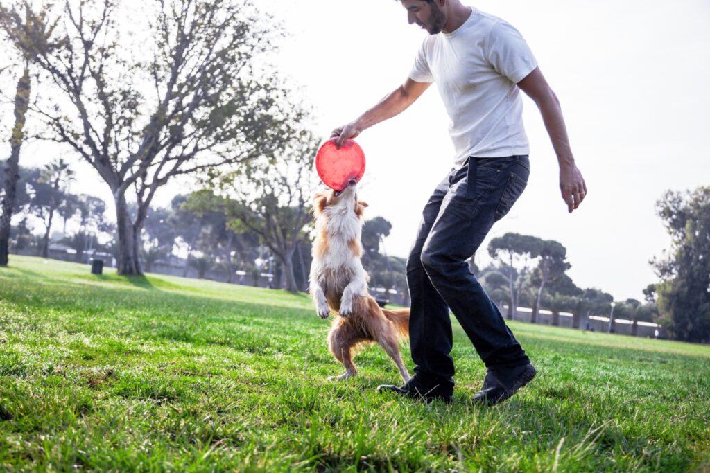 muskarac i pas