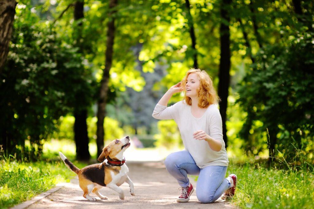 veza psa i vlasnika