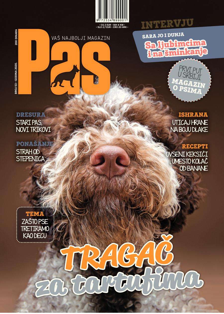 Pas magazin 53