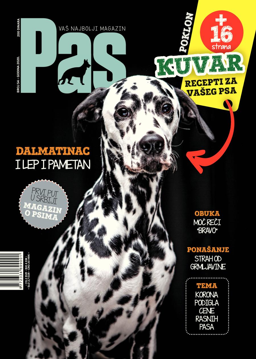 naslovna magazina